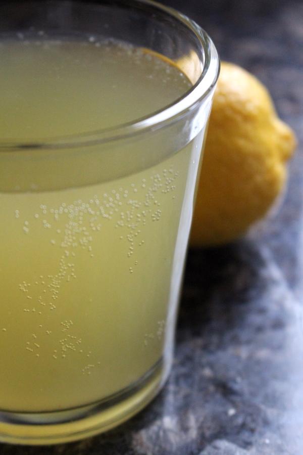 Finnish Fermented Lemon Soda