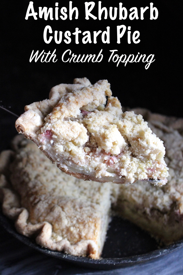 Amish Rhubarb Custard Pie with Crumb Topping ~ Looking for a creative rhubarb recipe? This old school pie tastes balances rich custard against tart rhubarb for the perfect spring pie.
