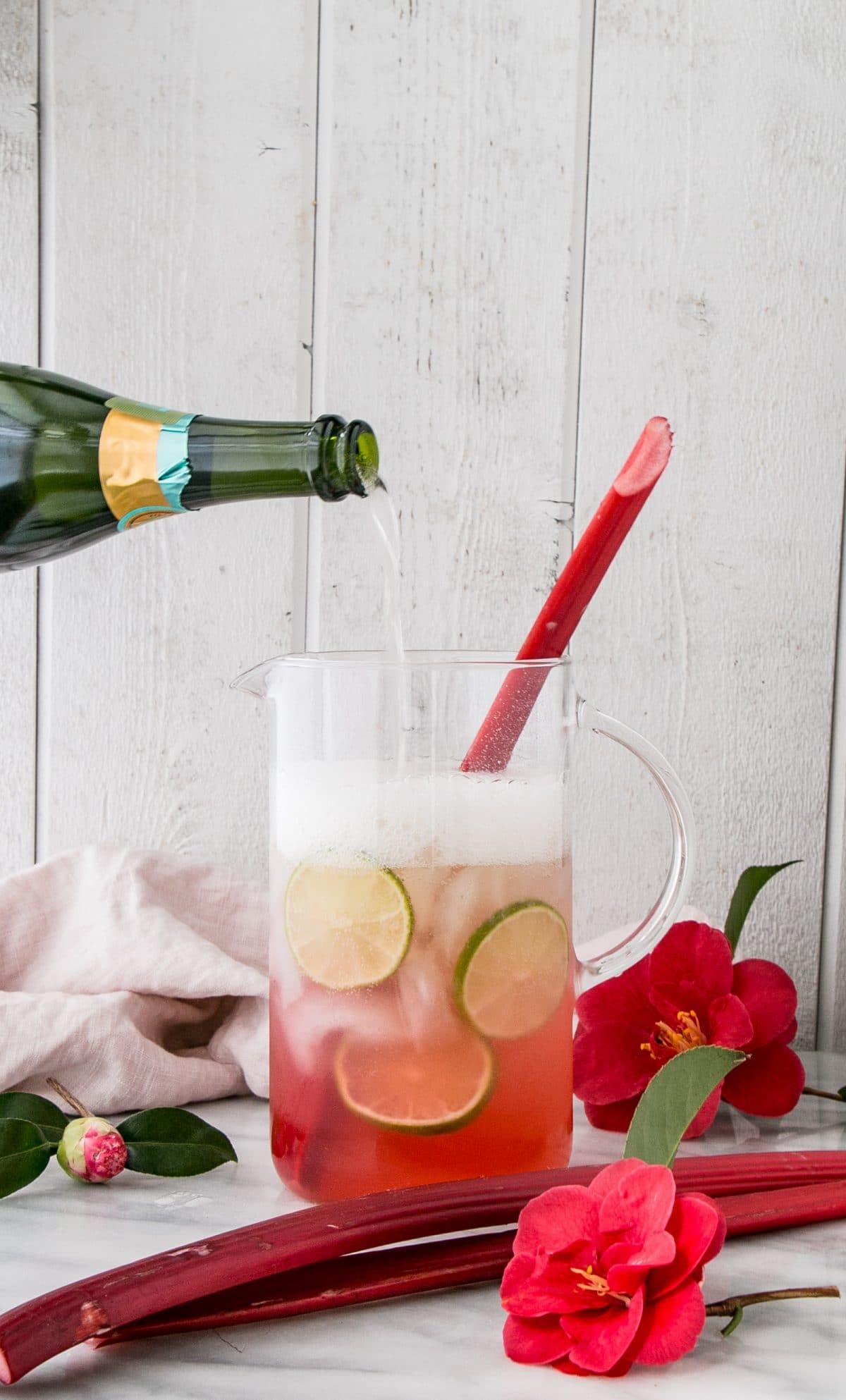 Sparkling Rhubarb Margarita Recipe
