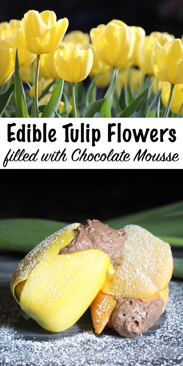 Tulip Flowers Filled with Chocolate Mousse ~ That's right, Tulips are edible flowers! They're lovely in both sweet and savory recipes, and tulips make the perfect cups for rich chocolate mousse.