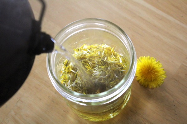 Making Dandelion Petal Tea