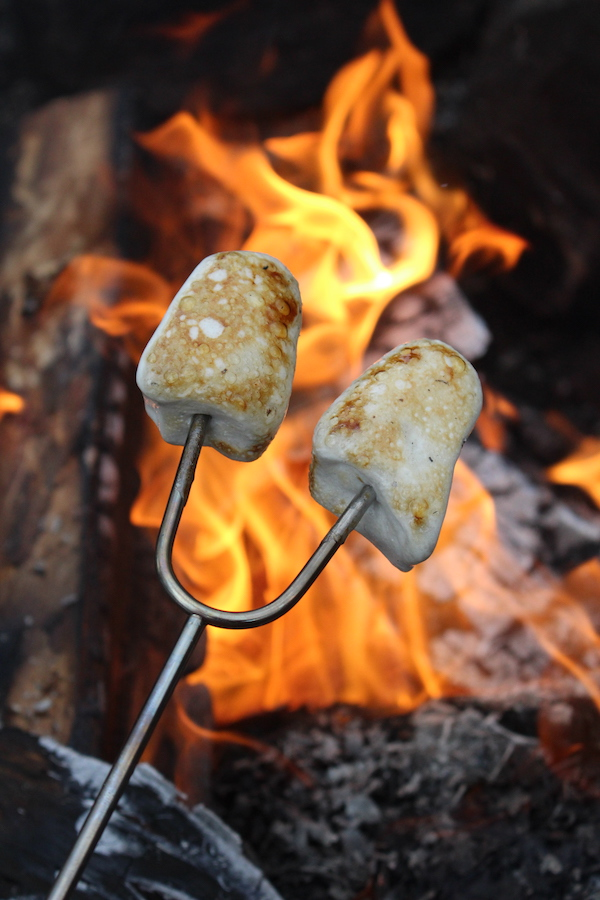 toasting homemade honey marshmallows over an open fire