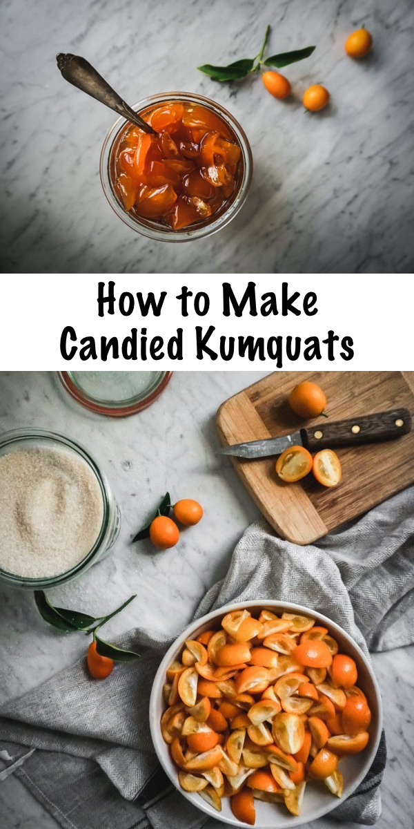 How to Make Candied Kumquats ~ Blessed with a bounty of kumquats? Celebrate those tiny sweet and tart citruses and make candied kumquats with this super easy recipe! #citrus #kumquats #preserves