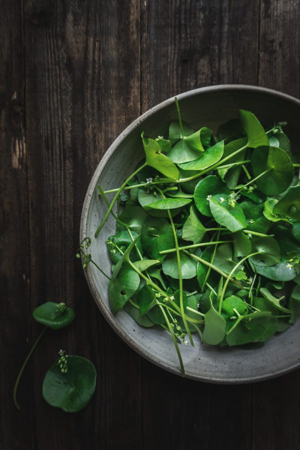bowl of green miner's lettuce leaves on a wood table.