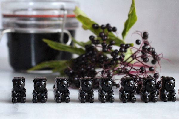 Homemade Elderberry Gummies made from elderberry syrup with raw honey.