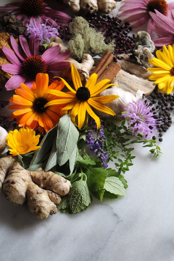 A collection of immune boosting herbs, spices, mushrooms and lichen from around my yard.
