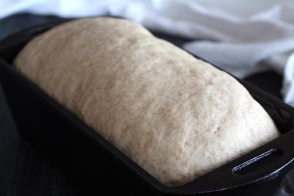 Honey Wheat Bread Dough Rising in Pan
